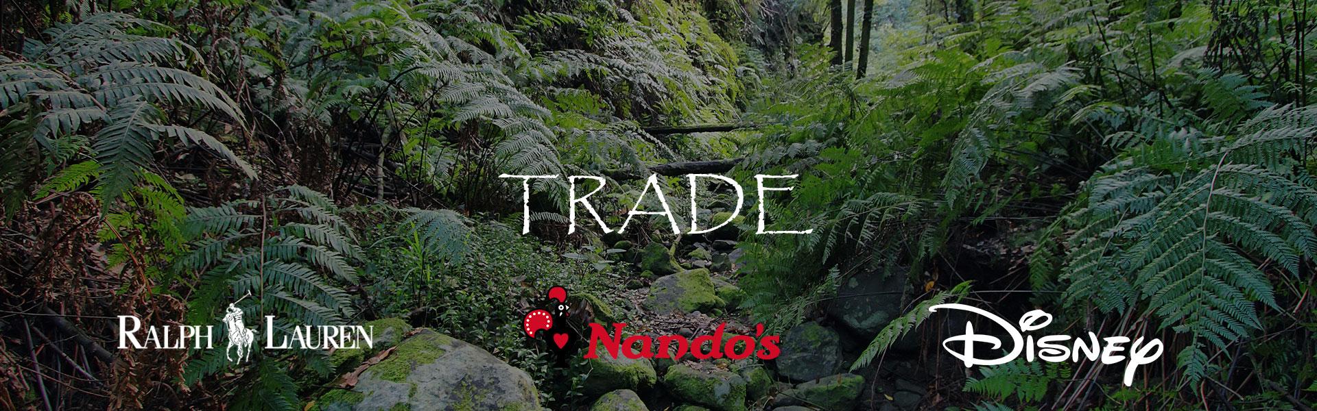 Trade driftwood